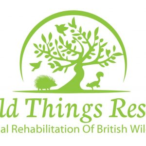 Wild Things Rescue